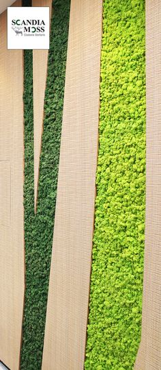 Scandia Moss SM Panel - Wall Embed.  Maintenance Free Green Wall solution.  Fire Safe (NS-EN ISO 11925-2), 100% Organic, Deodorizing & Harmful Substance Removal (JEM 1467).