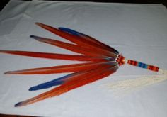 Native American NAC Loose Feather Fan Pow Wow Beaded Macaw – eBay find of the week