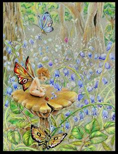 Bluebell Surrounds by Joanna Bromley
