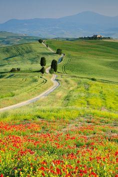 As curvas da Toscana.  Fotografia: http://www.duskyswondersite.com
