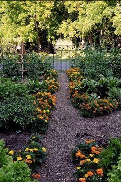 Eye Candy: 10 Vegetable Gardens You'll Love to Garden   Curbly