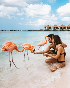 If you are trying to escape the cold to a year-round tropical paradise, Aruba is a great option. One of the best things is that Aruba is outside of the Hurricane Belt. Visit Aruba, Places To Travel, Places To Visit, Voyager Loin, Blog Voyage, Travel Couple, Girl Travel, Beach Travel, Travel Aesthetic