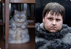 cat samuel early look alike game of thrones