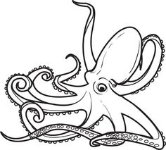 Octopuses With Strong Suction