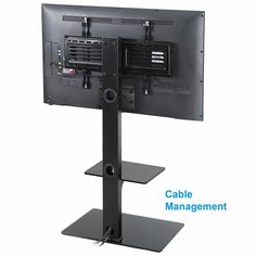 Height adjustable Floor TV Stand with Universal Swivel Bracket Mount and two AV Shelves for 32 to 65 Inches Plasma/LCD/LED 65 Inch Tv Stand, 32 Inch Tv, Tv Stand With Swivel Mount, Swivel Tv Stand, Portable Tv Stand, Tv Stand Room Divider, Motorized Tv Lift, Plasma Tv Stands, Tv Wall Brackets