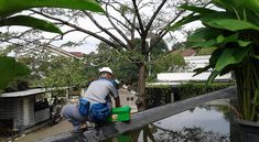 pasang cctv pengawas lingkungan perumahan Bali, Fair Grounds, Fun, Cable, Funny