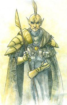 TES art,The Elder Scrolls,фэндомы,Ординатор (TES)