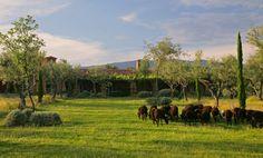 10 best rural retreats in Spain (La Lancha, Cáceres, Extremadura)