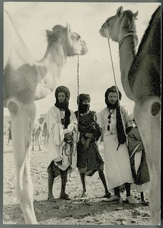 en Shalla loves vintage postcard from Goulimine in southern Morocco