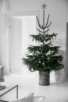 Scandi Christmas Tree in Galvanized Bucket via damernasvarld - more scandi nordic christmas decor ideas this way! Scandinavian Christmas Decorations, Scandi Christmas, Christmas Interiors, Minimal Christmas, Noel Christmas, Modern Christmas, Beautiful Christmas, Simple Christmas, Winter Christmas