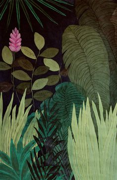 Green Jungle - illustration - giclee print