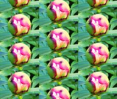 nuppupioni fabric by poppy's on Spoonflower - custom fabric