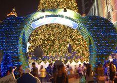 Central World Bear Christmas 2011 - For full blog on Bangkok Christmas lights check here: http://live-less-ordinary.com/bangkok-expat/bangkok-christmas-lights-central-world