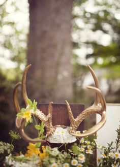 Baby Shower instead of a tree with baby items decorating antlers instead