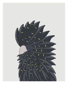 Red-Tailed Black Cockatoo - bird art by Australian graphic designers Eggpicnic.
