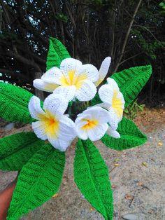 Watch The Video Splendid Crochet a Puff Flower Ideas. Phenomenal Crochet a Puff Flower Ideas. Crochet Puff Flower, Crochet Cactus, Crochet Flower Tutorial, Crochet Flower Patterns, Crochet Flowers, Plumeria Flowers, Tropical Flowers, Beautiful Crochet, Beautiful Flowers