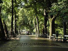 Krakau - Planty loved to walk here :) love Krakau