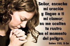 Señor, escucha mi oración y llegue a ti mi clamor; no me ocultes tu rostro en el momento del peligro. (Salmo 102, 2-3a)