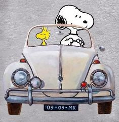 Charlie Brown Y Snoopy, Charlie Brown Halloween, Snoopy Images, Snoopy Pictures, Snoopy Comics, Fun Comics, Peanuts Cartoon, Peanuts Snoopy, Snoopy Wallpaper