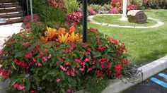 Why Should I Hire a Commercial Landscaping Company?
