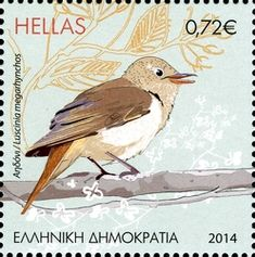 Common Nightingale stamps - mainly images - gallery format Nightingale Bird, Ex Yougoslavie, World Birds, Bird Costume, Going Postal, Vintage Stamps, Small Birds, Fauna, Stamp Collecting