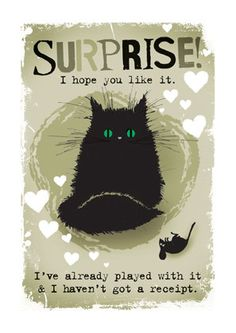 """Cats in Art and Illustration: """"Surprise, I hope you like it... I've already played with it and haven't got a receipt!"""""""