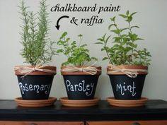 Easy-to-grow herbs make your kitchen smell wonderful and add flavor to any meal.