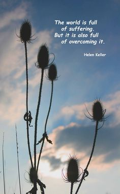 We keep on going, hopefully stronger & certainly wiser.