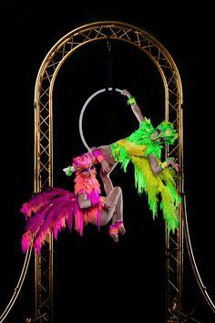 The Birdcage - Free Standing Aerial Hoop | London| UK