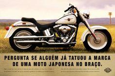 Harley   Pernil
