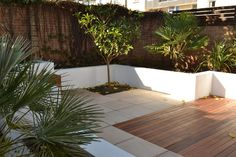 Tropical courtyard with decking, paving & rendered planters