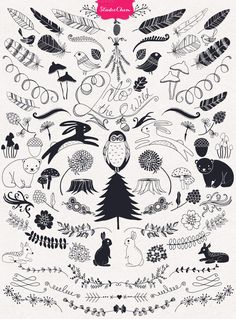 HUGE Hand drawn Nature Pack Elements by Studio Chem on @creativemarket