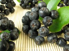 Aronia Berry: The New Berry on the Block : Underground Health Reporter