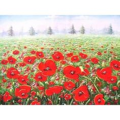 """""""Poppies in a Field"""" Original Oil Painting! Signed! GIN!"""