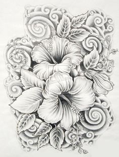 45 Beautiful Flower Drawings and Realistic Color Pencil Drawings - 14 drawings of flowers hibiscus Realistic Flower Drawing, Beautiful Flower Drawings, Beautiful Flowers, Drawing Flowers, Tattoo Flowers, Daisy Drawing, Pencil Drawings Of Flowers, Realistic Drawings, Flower Design Drawing