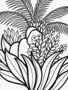 rainforest plants coloring pages | page rainforest monkey coloring ... - Coloring Pages Monkeys Trees