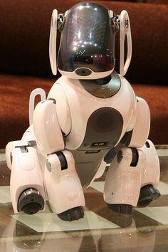 Robot, via Flickr.