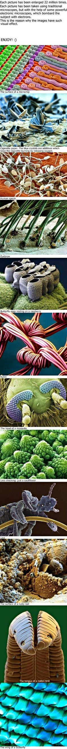Electron Microscope images.  These would be great in pointing out certain unsanitary practices.  Uh hem.  ;P