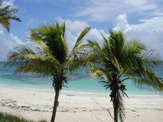 Tropical beach in Abaco