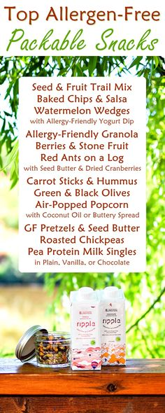 12 Top Allergen-Free Snacks to Pack for Kids on the Go (healthy, easy, gluten-free, dairy-free, nut-free, plant-based, and delicious!)