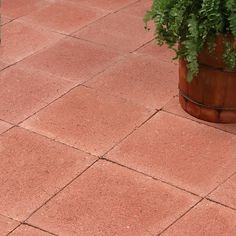 Shop Red Square Concrete Patio Stone (Common: 12 In X 12 In