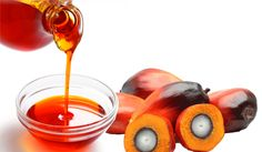 These are some of the known palm oil benefits. In turn, it will lower bad cholesterol levels, protect your vision and against cardiovascular issues. Palm Oil Benefits, Health Benefits, Healthy Oils, Healthy Recipes, Valencia, Red Palm Oil, Reduce Cholesterol, Cholesterol Levels, Oil Industry