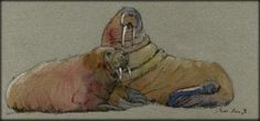 Walrus Seal Marine Mammal Sea Original Art Watercolor Animal Painting Juan Bosco | eBay