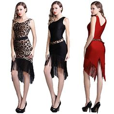a94d80d9a YC WELL Latin Dance Dress Tassel Women Salsa Rumba Cha Cha Samba Tango Dance  Performance Clothes Competition Costumes Party Stage(Leopard,L)
