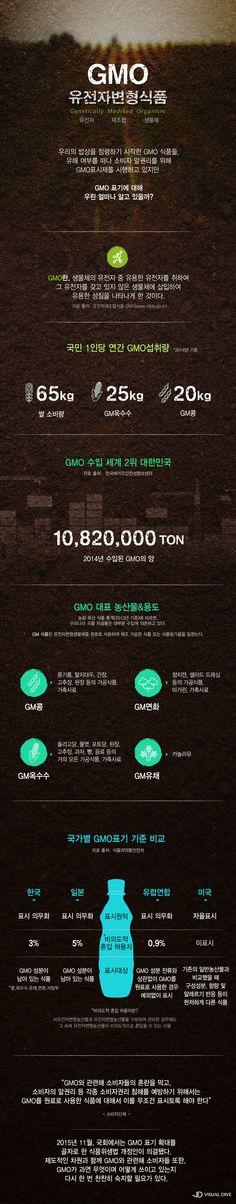 GMO, 어디까지 알고 있니? [인포그래픽] #GMO / #Infographic ⓒ 비주얼다이브 무단 복사·전재·재배포 금지