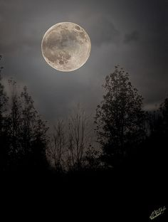 The moon was a ghostly galleon tossed upon cloudy seas (by Tennessee_Gator)