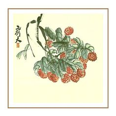 Chinese traditional painting-Shuimo Hua(水墨画).
