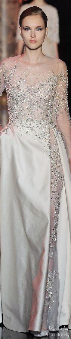 Elie Saab ~ Haute Couture FW 2014-15 jαɢlαdy