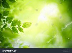 Closeup Nature View Green Leaf On ภาพสต็อก (แก้ไขตอนนี้) 1466371118 Green Leaf Background, Nature View, Green Leaves, Close Up, Stock Photos