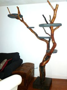 """I have two cats that I absolutely adore and had been wanting a cat tree for them for quite a while. My husband refused to have the """"eyesore"""" of one ..."""